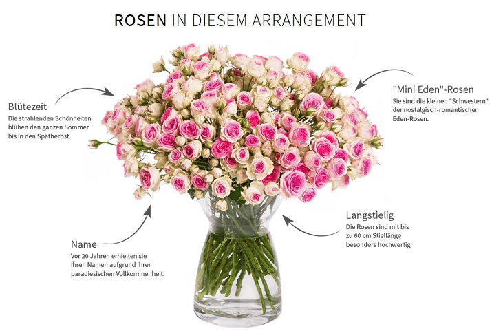 Rosen in diesem Arrangement