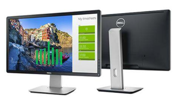 Dell Professional P2416D LED QHD